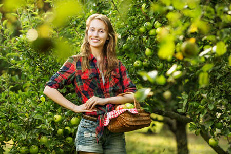 Woman with basket full of ripe apples in a garden. Young smiling attractive woman is standing with full basket of organic apples in a orchard. Country happy lifestyle concept.  photo