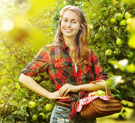 country lifestyle: Woman with basket full of ripe apples in a sunny garden. Young smiling attractive woman is standing with full basket of organic apples in a sunlit orchard. Country happy lifestyle concept.  Stock Photo