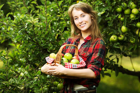 Woman with basket full of ripe apples in a garden. Young smiling attractive woman is standing with full basket of organic apples in a orchard. Country happy lifestyle concept.