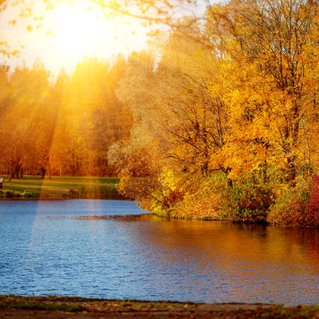 Autumn Landscape. Park in Autumn. The bright colors of fall in the park by the lake.