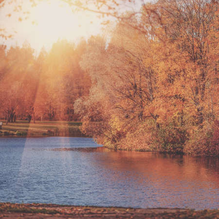 autumn colors: Autumn Landscape. Park in Autumn. The bright colors of fall in the park by the lake.