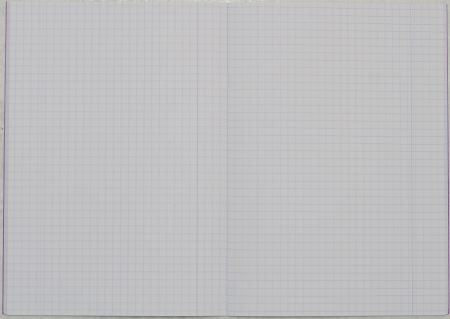 il notebook con fogli a quadretti