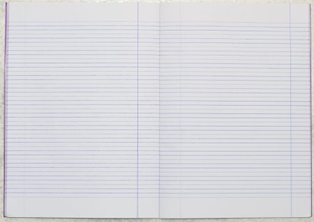 the blank line notebook paper Stock Photo - 16293891