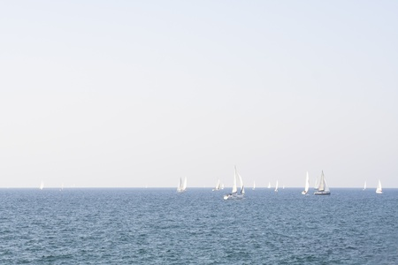 yachts on the waves of a sea landscape