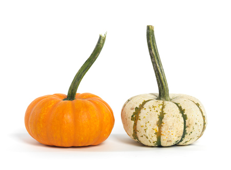 Orange and white gourds isolated on white background