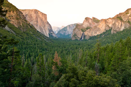 View over a green valley and the famous El Capitan mountain at sunset. El Capitan is a vertical rock formation in Yosemite National Park, California, USA