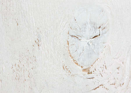 faded: textured white wooden worn old faded background