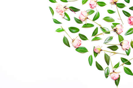 The decor of green leaves and pink flowers, roses on a white background. Top view of a flat Stock Photo