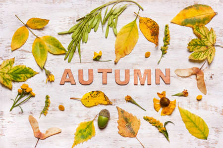 The word Autumn on a wooden background with yellow leaves. View from above, flat.