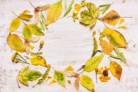 Frame of yellow leaves on a wooden background. View from above, flat. Concept of Autumn Stock Photo