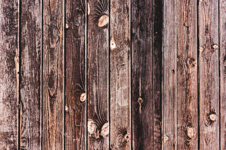 Old brown wooden oak texture. Grunge vertical panel background.Text space, empty template