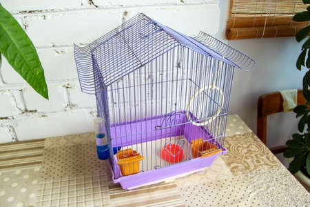 Empty bird cage with accessories in an apartment on a brick wall background