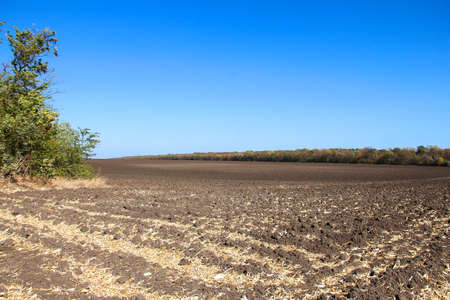 Plowed field and a good weather