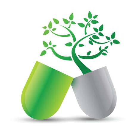 terapias alternativas: p�ldora con dise�o ilustraci�n naturaleza ingredientes sobre blanco Vectores