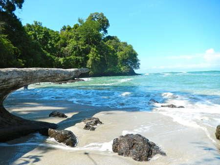 맑은 물과 해변과 열대 바다. 낙원에 여행