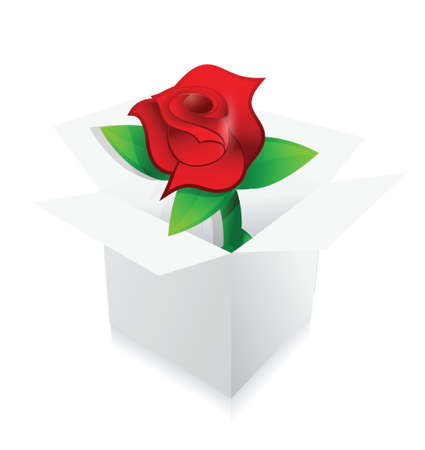 red rose present inside a box illustration design over white Stock Vector - 20151942