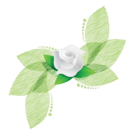 rose over green leaves illustration design over a white background Vector