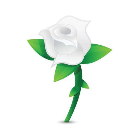 rose: white rose illustration design over a white background