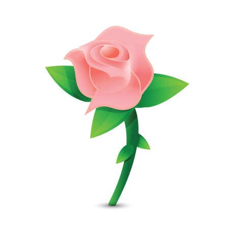 rose: pink rose illustration design over a white background Illustration