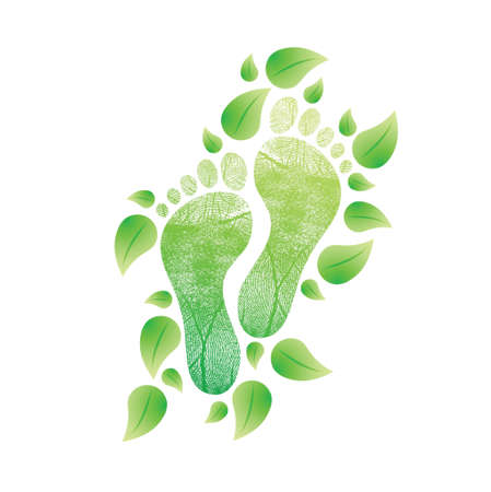 l natural: eco friendly feet concept. natural illustration design over white