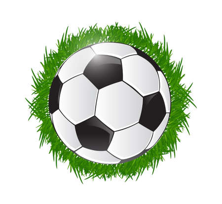 soccer ball and grass illustration design over white illustration