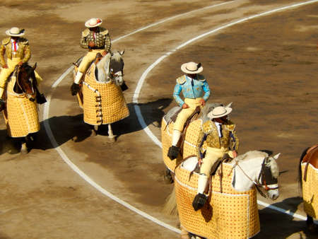 bullfighters: Bullfighters in the ring. traditional picadors. horse and picador