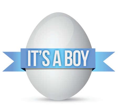 its a boy egg illustration design over a white background