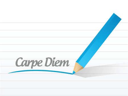 seize: carpe diem written message illustration design over a white background