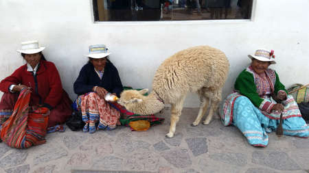 textille: PERU - SEP 13 -2014: Unidentified Peruvian women in traditional colorful clothes sits with her lama