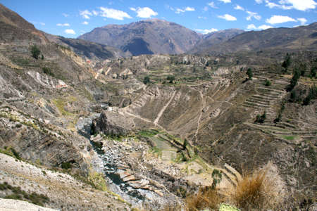 terracing: Colca Canyon one of the deepest canyons in the world, Peru Stock Photo