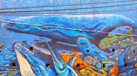 alegre: VALPARAISO - JUNE 10: Street art graffiti in Concepcion and Alegre districts of the protected UNESCO World Heritage Site of Valparaiso on June 10, 2015 in Valparaiso, Chile