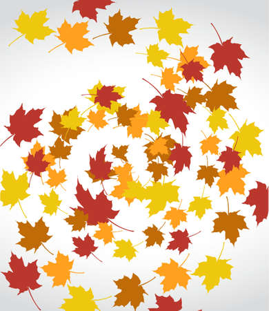 winding: set of autumn leaves over a white background. Illustration design