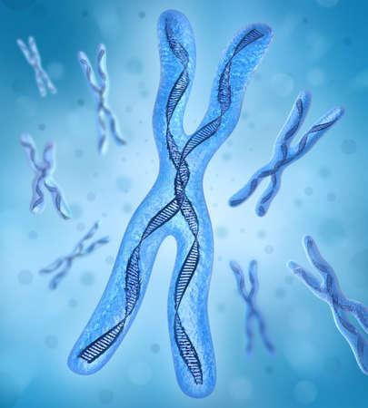 g�n�tique: Chromosome x, ADN cordes Banque d'images