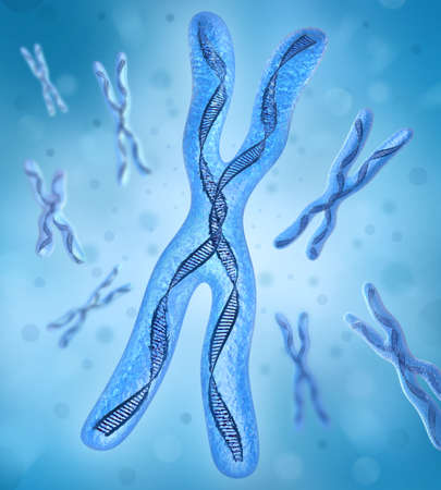 cromosoma: Cromosoma x, Strands de ADN  Foto de archivo