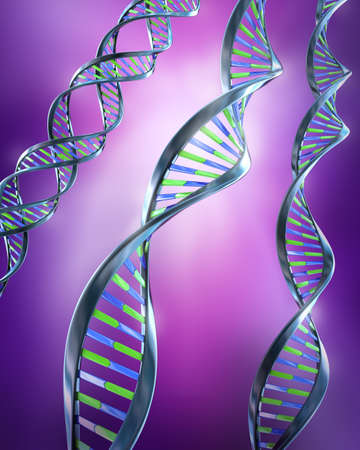 genome: DNA Strands - Simple and dual helix  Stock Photo