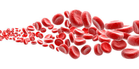 Blood cells on white background photo