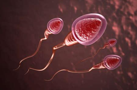 Sperm cells swim to the egg Stock Photo - 13235923