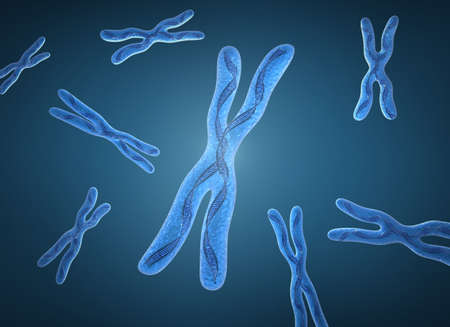 Chromosome x and DNA Strands photo