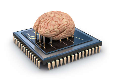 Human brain and computer chip, 3D concept photo