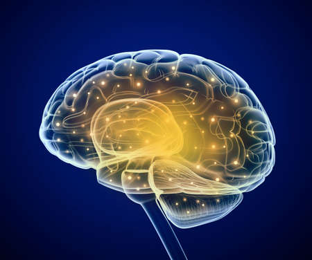 biological science: Brain impulses  Thinking prosess Stock Photo