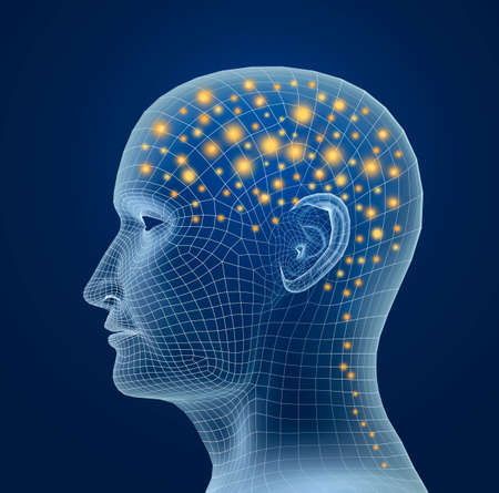 nervios: Cerebro y legumbres. proceso del pensamiento humano