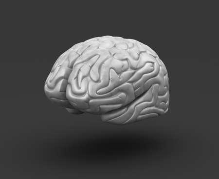 gyrus: Human brain on black background Stock Photo