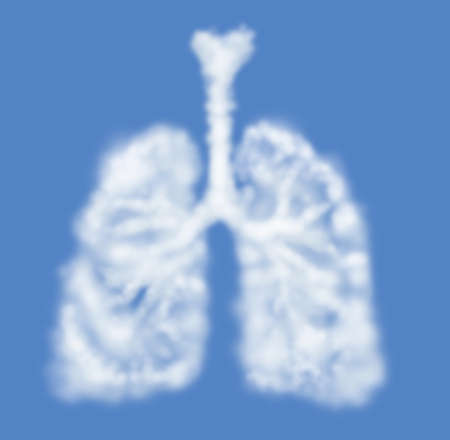 lung bronchus: Human lungs shaped as cloud isolated on blue