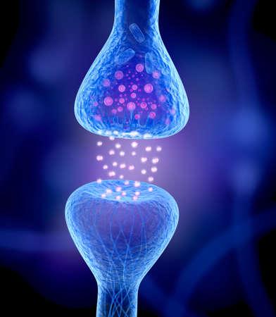cellule nervose: Recettore attivo isolato su blu Archivio Fotografico