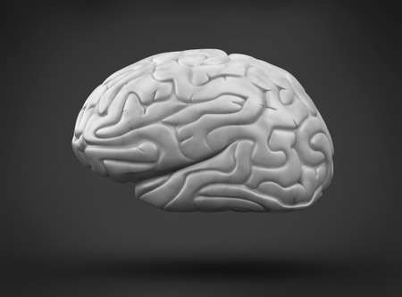 brainy: Human brain on black background Stock Photo