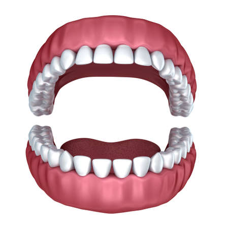 mouth open: 3d open denture isolated on white
