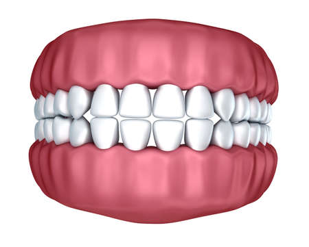 yawn: Human denture 3D image, isolated on white