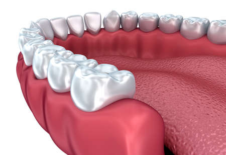yawn: Denture isolated on white. Medically accurate 3D illustration Stock Photo