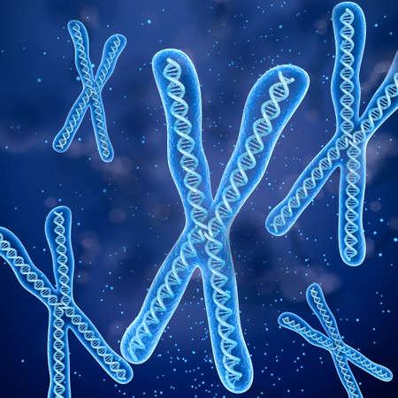 differential focus: Chromosome molecule concept, Medical accurate 3D illustration