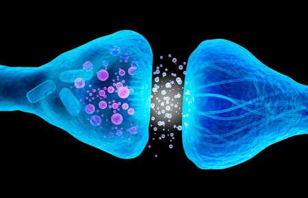 cellule nervose: recettore attivo vista macro medica accurata illustrazione 3D